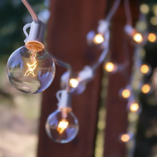 Shop for Globe String Lights, 2 In. Bulbs, 50 Ft. White Wire, Outdoor, Clear
