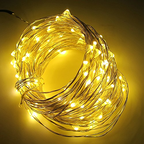 Led String Lights Dc : Shop for Smartlive LED String lights DC 12V 10m 33feet 100 LEDS,Warm White Waterproof starry ...
