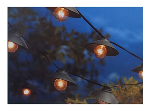 Outdoor String Lights Smith Hawken : Shop for Smith & Hawken Indoor/Outdoor String Lights - 10 Count Open Lamp by Smith & Hawken